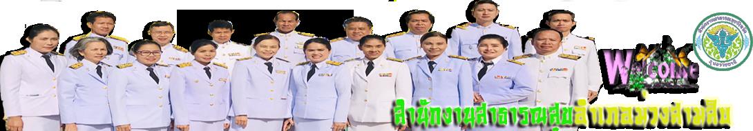 รับ - ส่งข้อมูลสำนักงานสาธารณสุขอำเภอม่วงสามสิบ